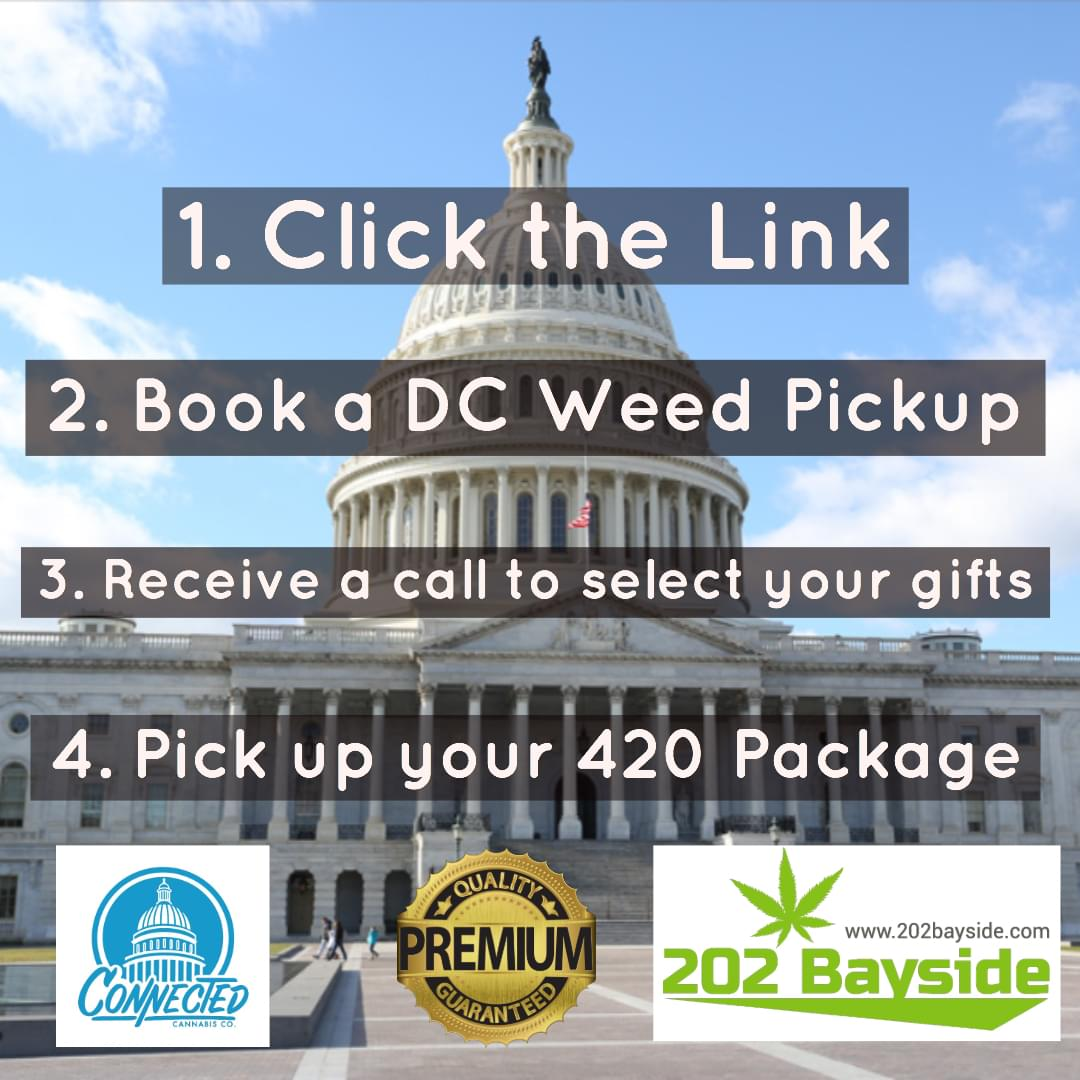 202 Bayside Menu DC Weed Delivery 202Bayside Reviews